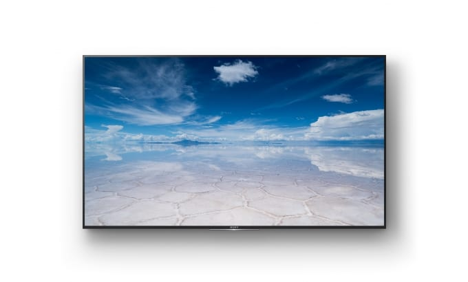 "sony 75"" 4k Commercial screen"